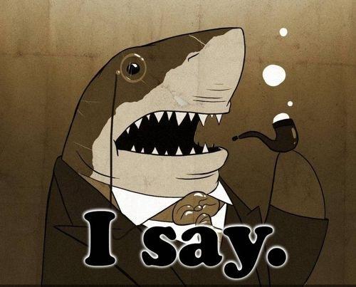 I Say Shark